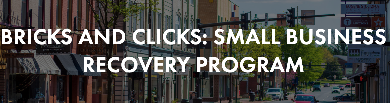 Bricks and Clicks Business Recovery Graphic